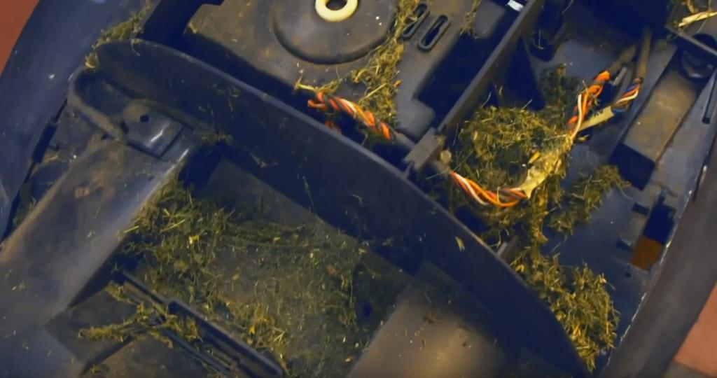 Herbe à l'intérieur d'un tondeuse robot